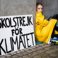 Környezettudatosság a jelenlegi oktatási rendszerben - interjú Szeidemann Ákossal
