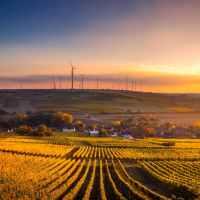13 európai ország is zöld gazdasági felépülést szeretne a vírus után
